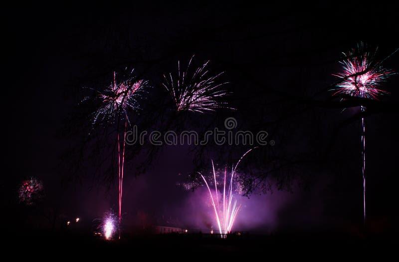Feuerwerk am neuen Jahr stockfotografie