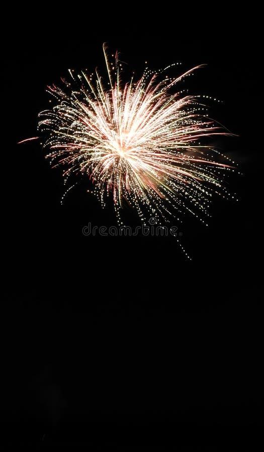 Feuerwerk obenliegend im Himmel der dunklen Nacht lizenzfreies stockbild