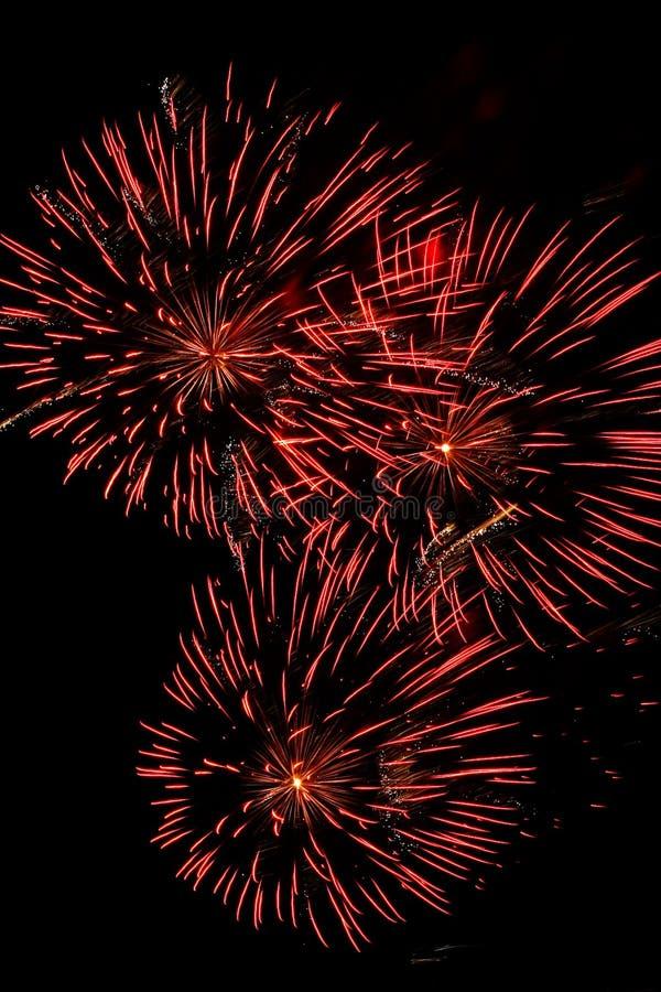 Feuerwerke 1 stockbild