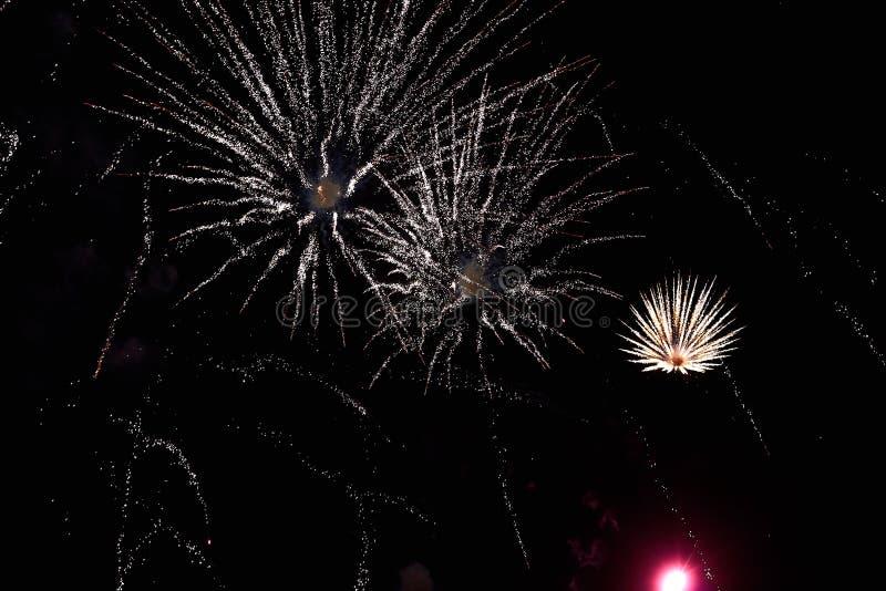 Feuerwerke im nächtlichen Himmel Beschaffenheitsgruß Abstraktes Foto von Florida stockfotos