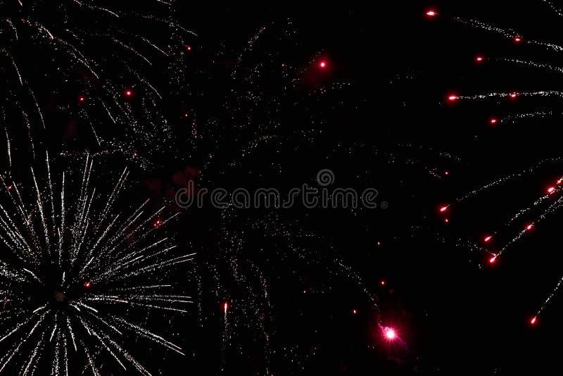 Feuerwerke im nächtlichen Himmel Beschaffenheitsgruß Abstraktes Foto von Florida stockfoto