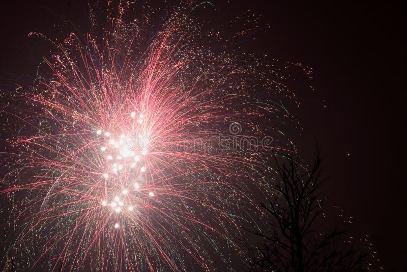 Feuerwerke im niederländischen Jahr 2018/2019 lizenzfreies stockfoto