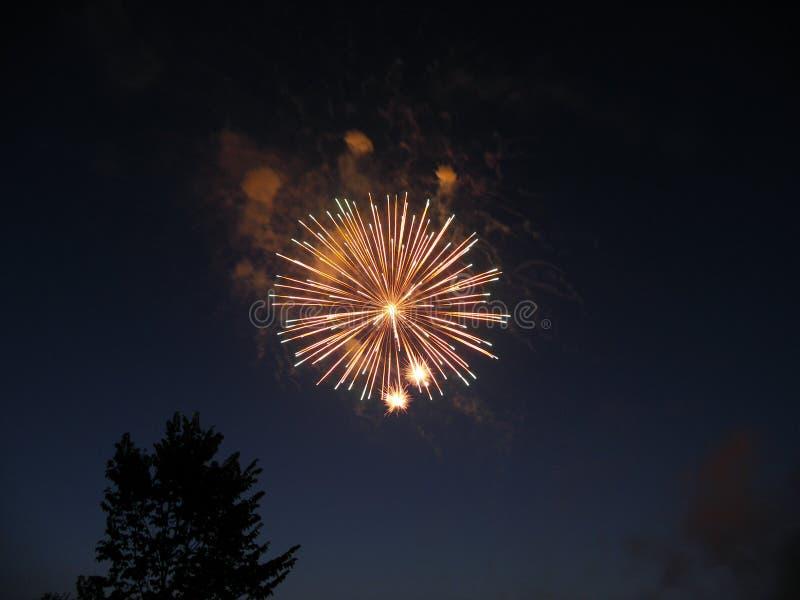 Feuerwerke um Mitternacht lizenzfreie stockbilder
