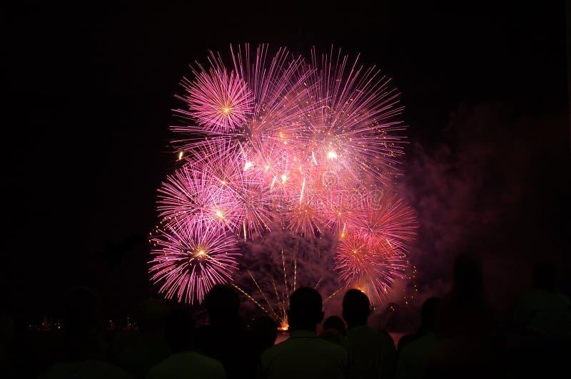 Download Feuerwerkerscheinen stockfoto. Bild von blumenstrauß, großartig - 858928
