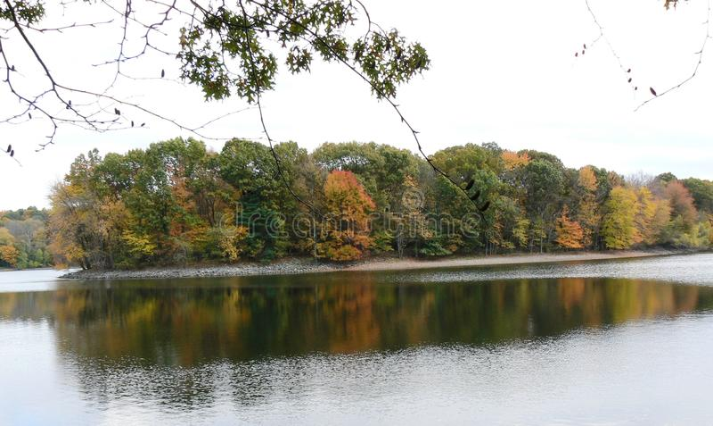 Feuillage d'automne photographie stock libre de droits
