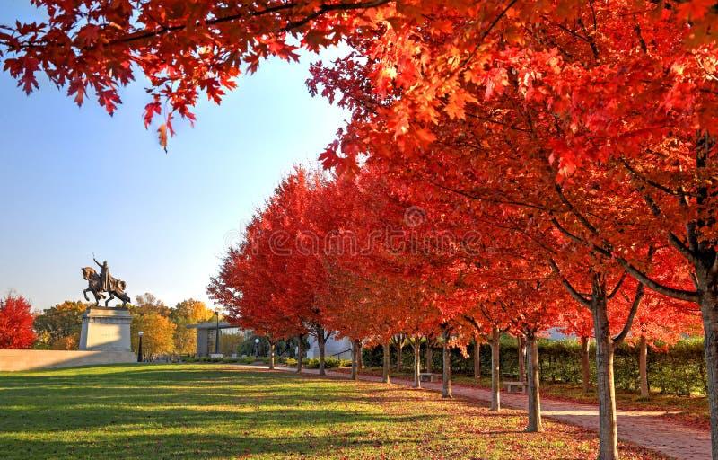 Feuillage d'automne autour du St Louis Statue photos stock