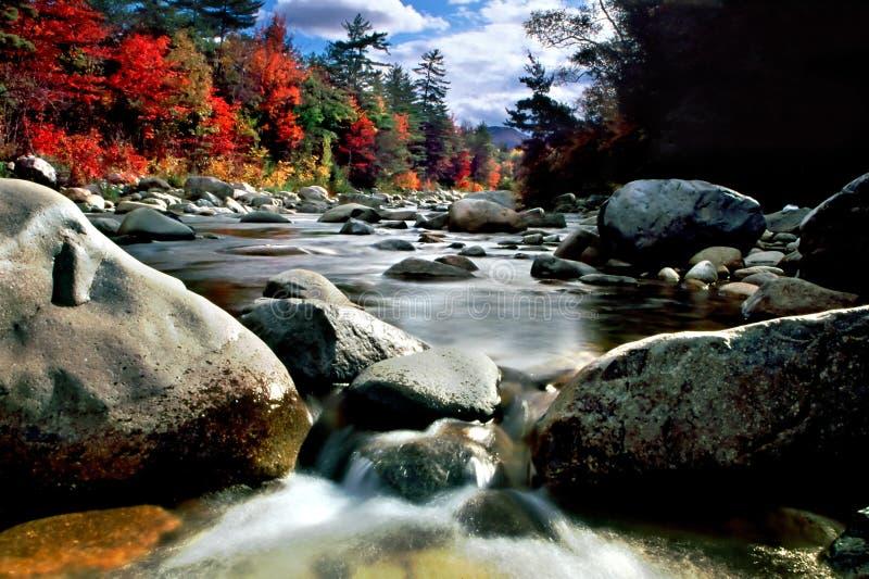 Feuillage d'automne de la Nouvelle Angleterre image stock