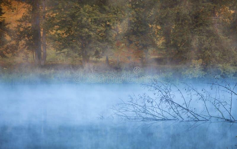 Feuillage d'automne et étang brumeux photos stock