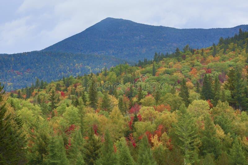 Feuillage d'automne et montagnes de la chaîne de Bigelow dans Maine images stock