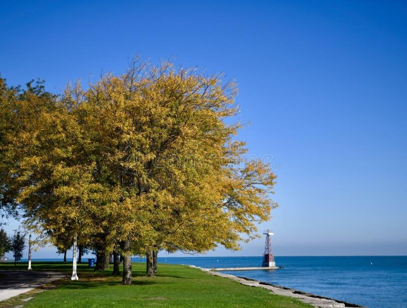 Feuillage d'automne sur le bord du lac photos stock