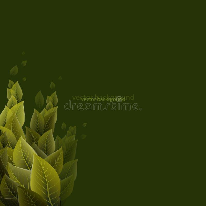 Feuillage dense sur un fond vert, vecteur illustration stock