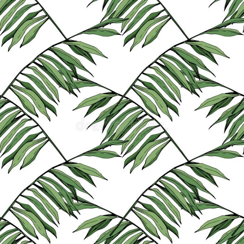 Feuillage floral de jardin d'usine de feuille de vert de vecteur Art gravé d'encre Feuilles d'arbre de Palm Beach Modèle sans cou illustration libre de droits