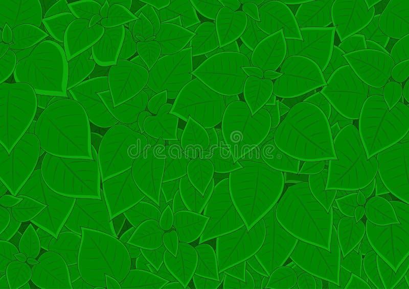 Feuillage vert dense illustration stock
