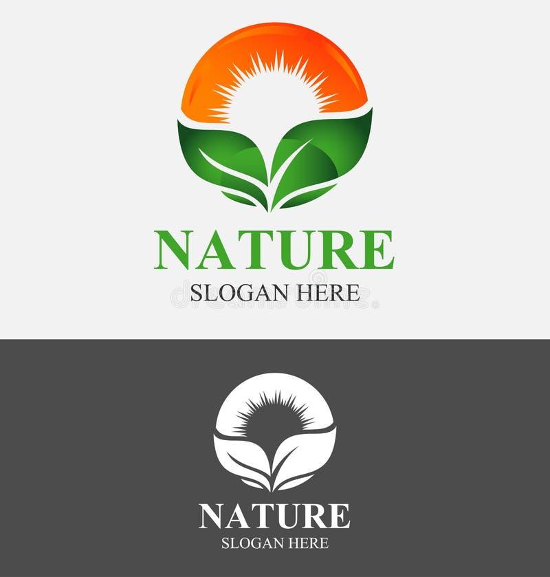 Feuille abstraite de vert d'Eco de nature et logo de Sun illustration stock