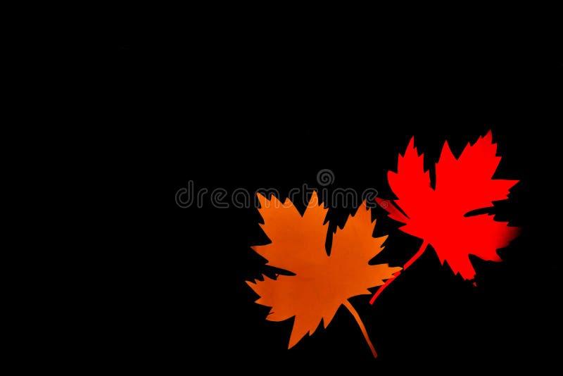 Feuille d'érable de papier jaune et rouge sur le fond noir Bonjour concept d'automne Métiers fabriqués à la main Copiez l'espace image libre de droits