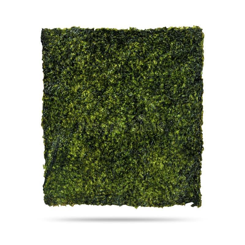 Feuille d'algue frite d'isolement sur le fond blanc Algue sèche de Nori avec le casse-croûte Chemin de coupure photos libres de droits