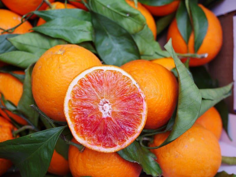 Feuille d'orange sanguine images stock