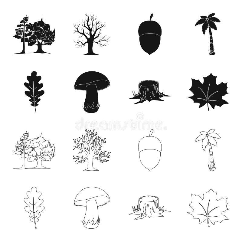 Feuille de chêne, champignon, tronçon, feuille d'érable Icônes réglées de collection de forêt dans le noir, actions de symbole de illustration stock
