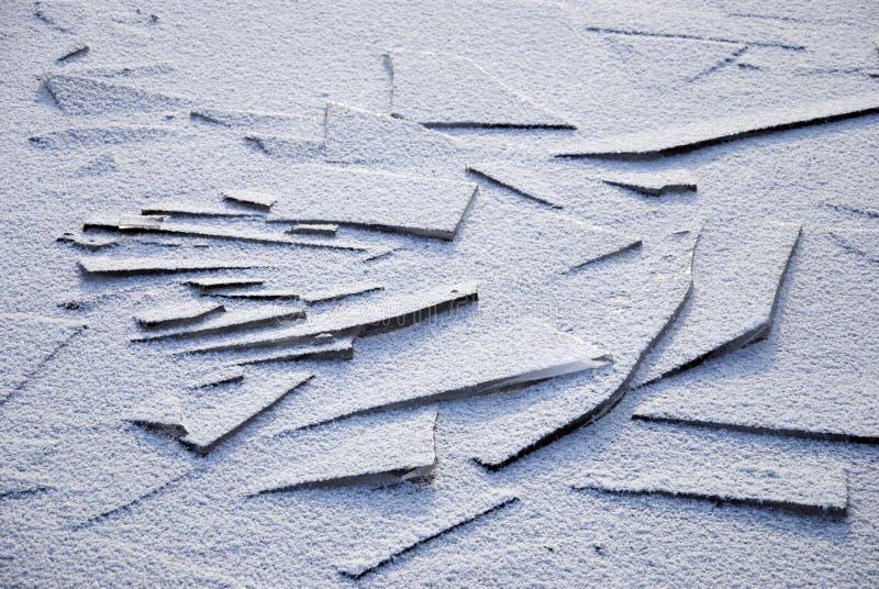 Feuille de glace photo stock