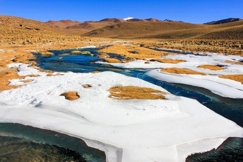 Feuille de glace sur des herbes, Bolivie images libres de droits