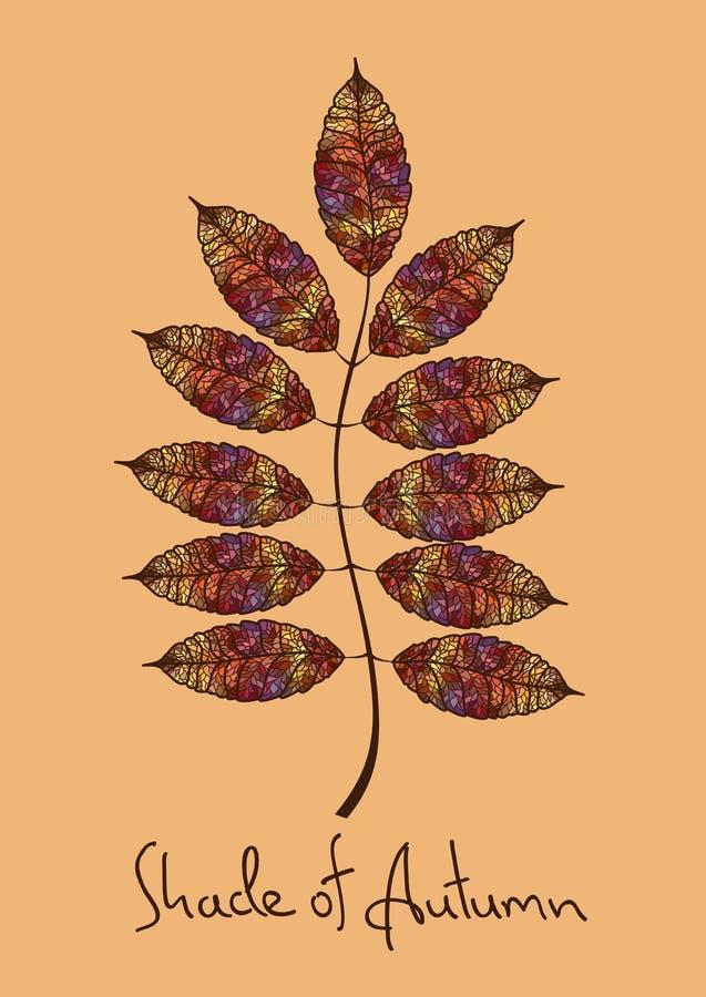 Feuille de sorbe d'automne faite en mosaïque illustration libre de droits