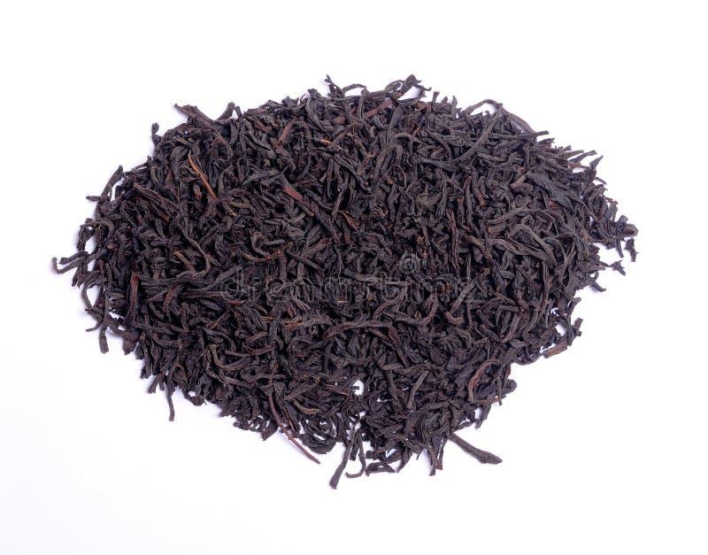 Feuille de thé photographie stock