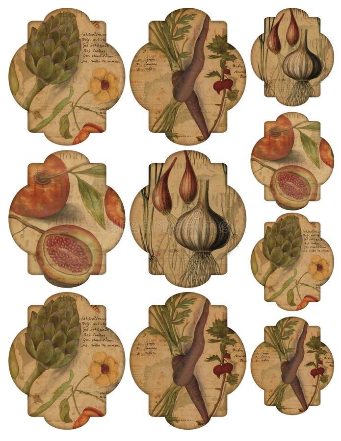 Feuille imprimable d'étiquette - fruits et légumes de vintage étiquette - étiquettes d'éphémères - étiquettes imprimables gastron illustration de vecteur