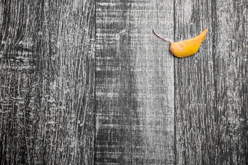 Feuille jaune d'automne sur l'escalier en bois désaturé photographie stock libre de droits