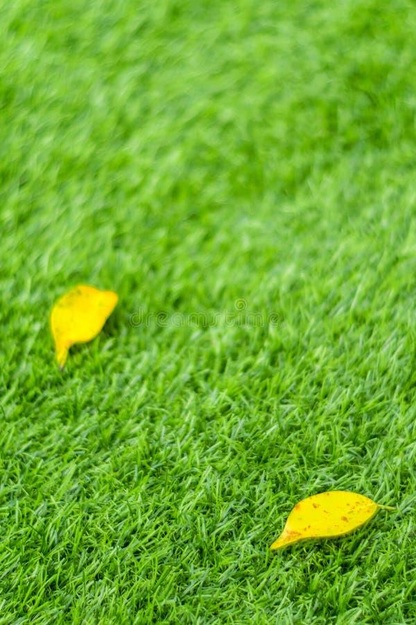 Feuille jaune de chute sur l'herbe artificielle par profondeur de fie photographie stock libre de droits