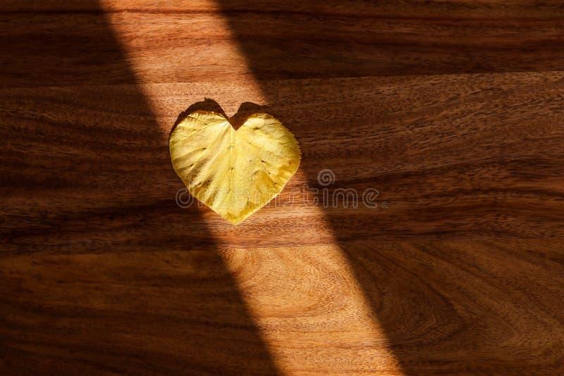 Feuille jaune illuminating d'automne de rayon de Sun de forme de coeur sur le fond en bois photos stock
