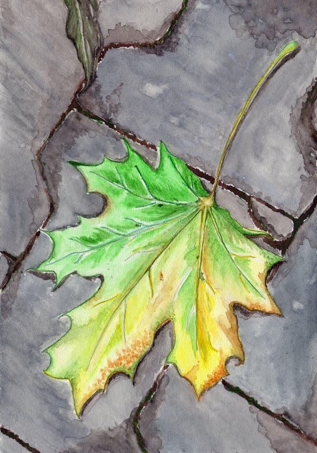 Feuille tombée par érable d'automne d'aquarelle sur l'asphalte illustration de vecteur