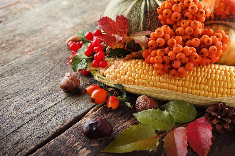 Feuilles avec des baies et des légumes image stock