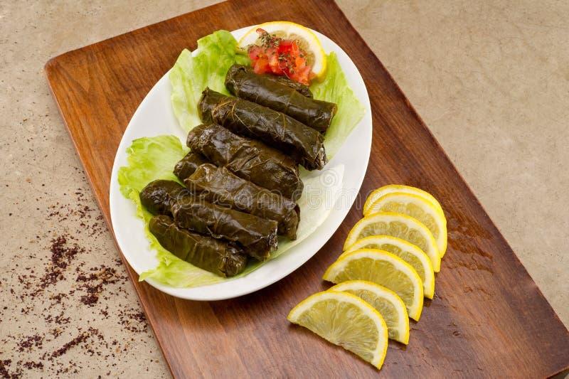 Feuilles bourrées de vigne, cuisine libanaise photographie stock