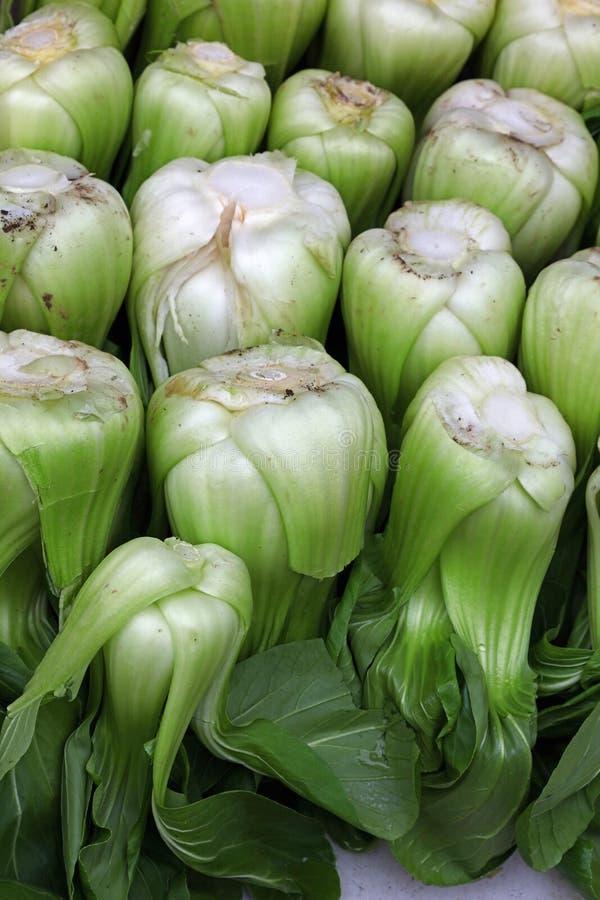 Feuilles choy vertes fraîches de chou de chine de Bok photographie stock libre de droits