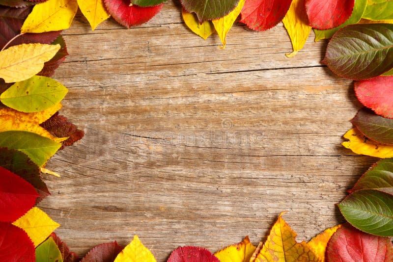 Feuilles colorées de fond d'automne Copiez l'espace, vue supérieure photographie stock
