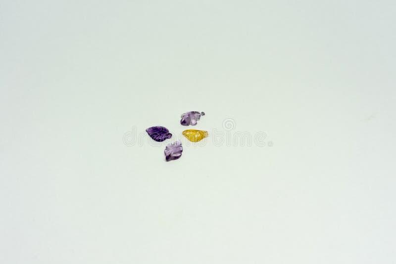 Feuilles colorées de gemme sur le fond d'isolement par blanc image stock