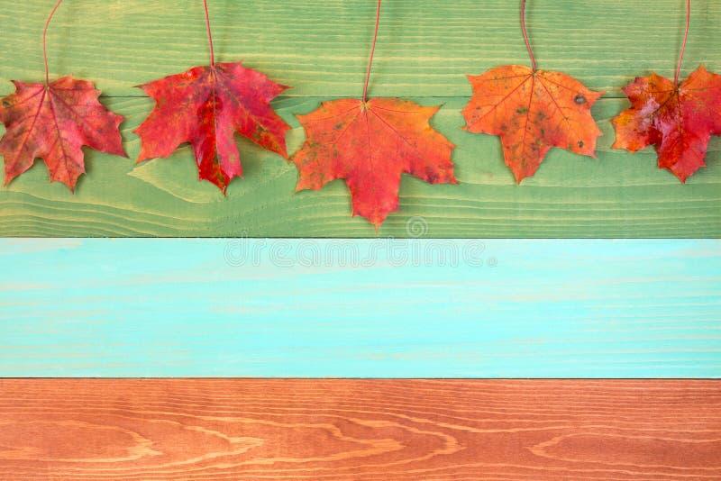 Feuilles d'automne accrochant au-dessus du fond en bois photographie stock