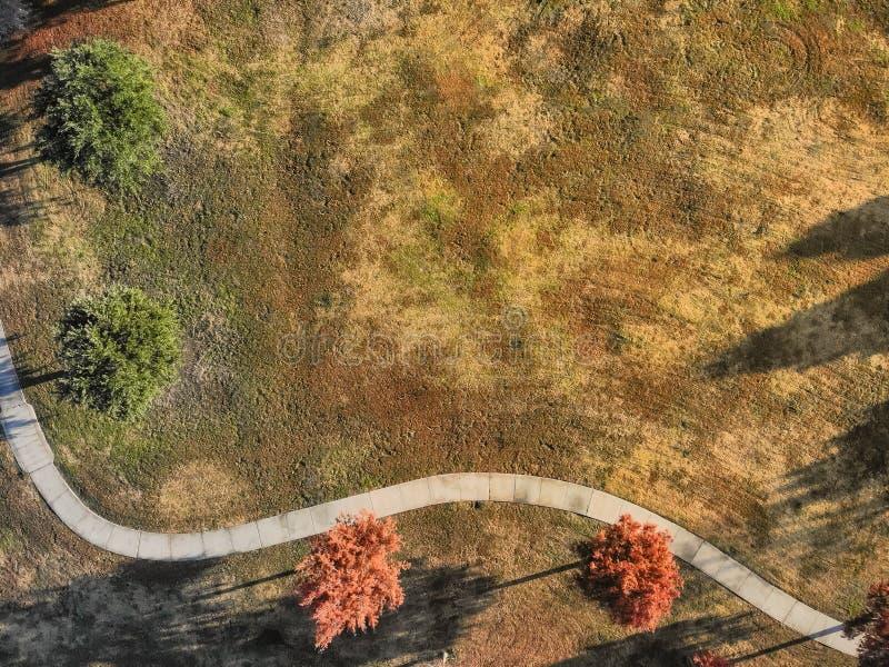 Feuilles d'automne colorées de vue aérienne le long de passage couvert de parc près de Dallas, le Texas image libre de droits