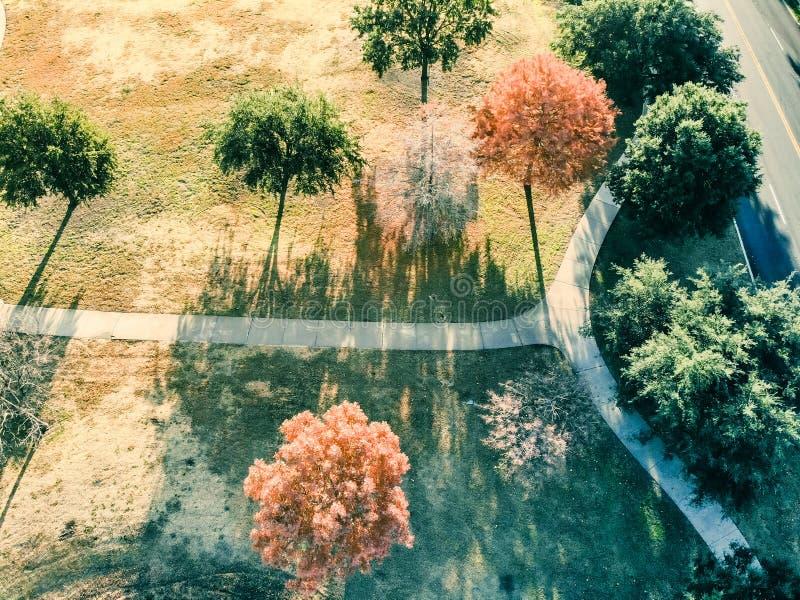 Feuilles d'automne colorées de vue aérienne le long de passage couvert de parc près de Dallas, le Texas photos libres de droits