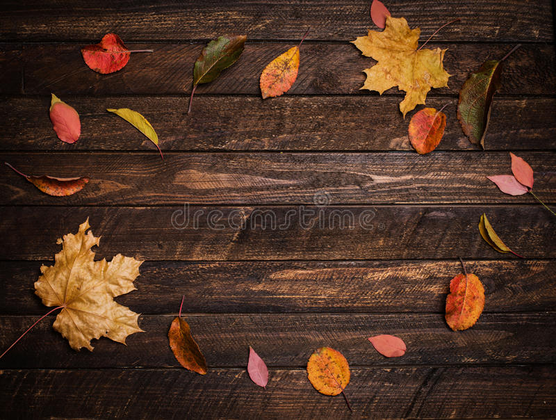 Feuilles d'automne colorées sur un vieux fond en bois foncé Aut lumineux photographie stock libre de droits