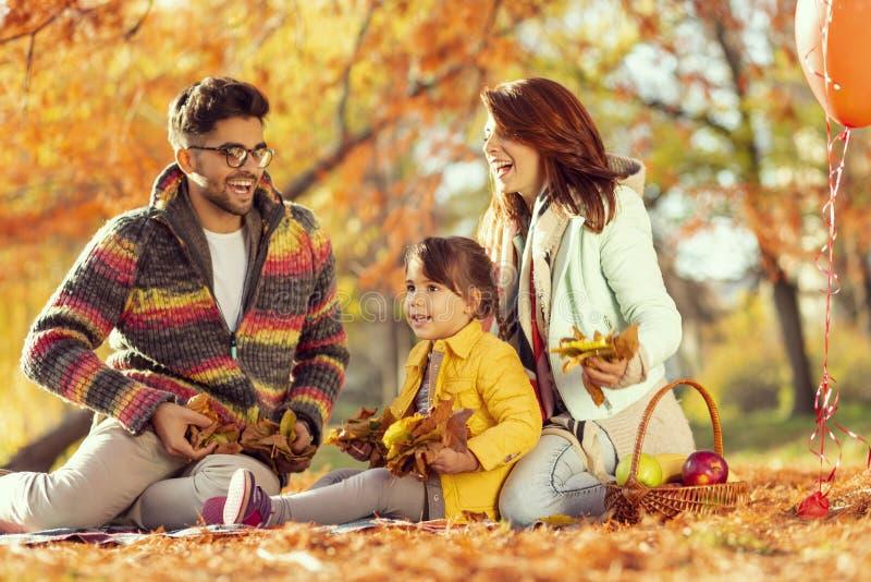 Feuilles d'automne de lancement de famille image stock
