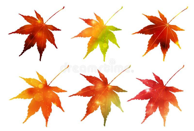 Feuilles d'automne de matériel du Japon photos stock