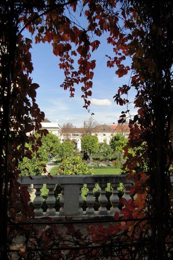 Feuilles d'automne de Schonbrunn de palais au jardin royal image stock