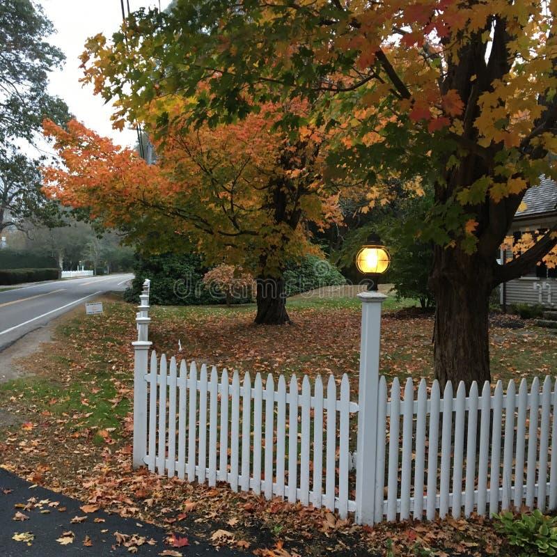 Feuilles d'automne et clôture blanche images libres de droits
