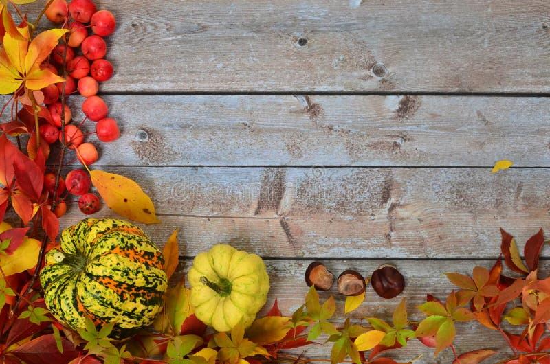 Feuilles d'automne, fruits et légumes photo stock