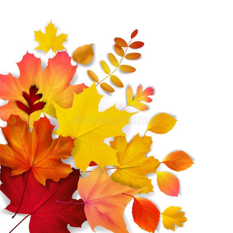 feuilles d'automne jaunes, oranges, rouges illustration de vecteur