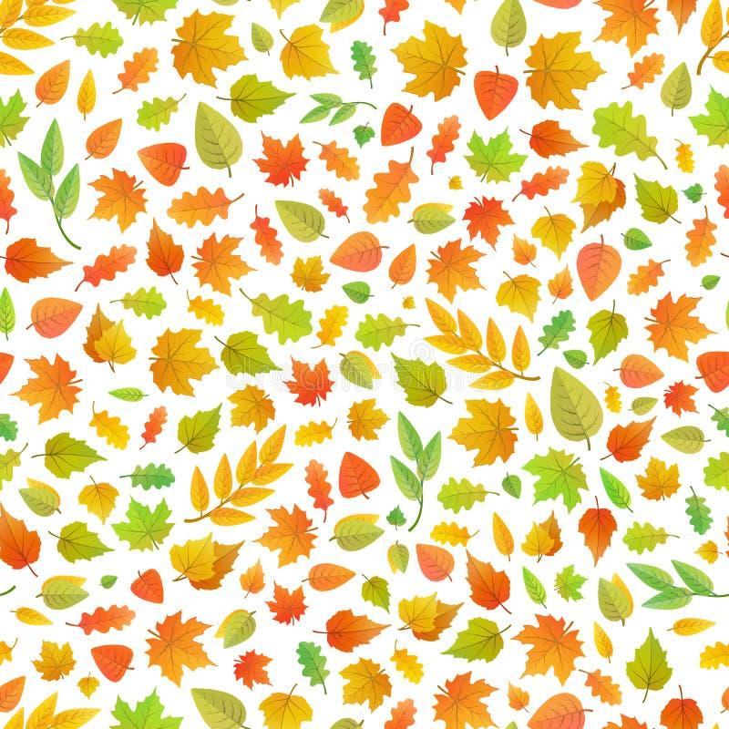 Feuilles d'automne mignonnes du genre différent d'arbres sur le modèle blanc et sans couture illustration libre de droits