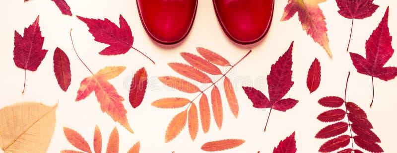 Feuilles d'automne multicolores et bottes en caoutchouc rouges Fond d'automne photographie stock libre de droits