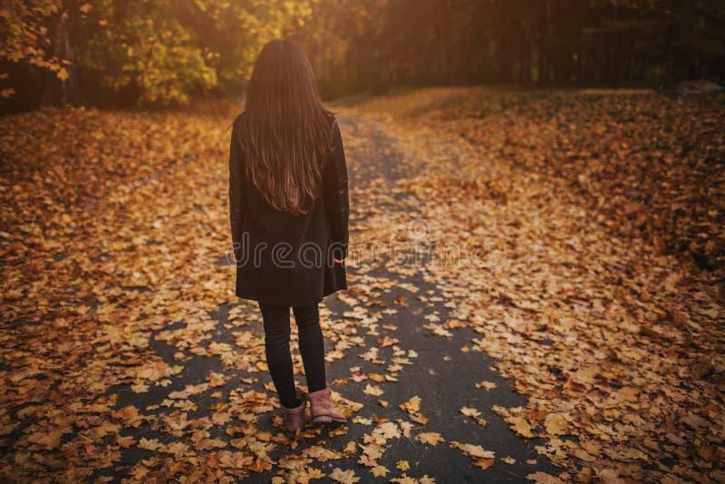 Feuilles d'automne tombant sur la jeune femme heureuse en portrait de forêt de fille très belle en parc de chute photos libres de droits