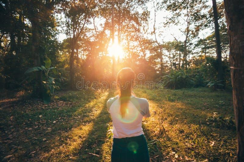 Feuilles d'une prise de fille et position dans la forêt et le coucher du soleil image libre de droits